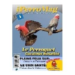 IperroMag numéro 1,2 et 3 (PDF)