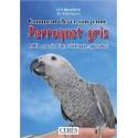 Comment élever un jeune perroquet Gris