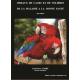 Oiseaux de cages et de volières, de la maladie à la bonne santé